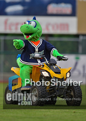 18 July 2013: Vermont Lake Monsters Mascot Champ arrives on the field to entertain the fans prior to a game against the Aberdeen Ironbirds at Centennial Field in Burlington, Vermont. The Lake Monsters rallied with three runs in the bottom of the seventh to defeat the Ironbirds 6-4 in NY Penn League action. Mandatory Credit: Ed Wolfstein Photo