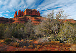 Morning in Sedona, Cathedral Rock, Sedona, Arizona