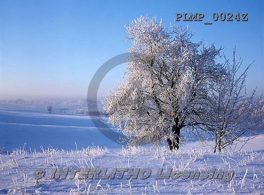 Marek, CHRISTMAS LANDSCAPES, WEIHNACHTEN WINTERLANDSCHAFTEN, NAVIDAD PAISAJES DE INVIERNO, photos+++++,PLMP0024Z,#xl#