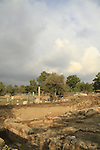 Israel, Coastal Plain, archaeological excavations in Ashkelon, site of the Herodian Basilica