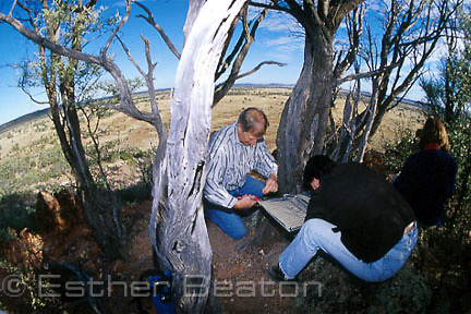 Scientist and volunteer setting trap for Yellow-footed Rock Wallaby. Wallaroo Range, Lambert Station, western QLD