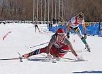 2014 MW DI Skiing