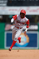 Williamsport Crosscutters Johan Rojas (13) running the bases during a NY-Penn League game against the Batavia Muckdogs on August 27, 2019 at Dwyer Stadium in Batavia, New York.  Williamsport defeated Batavia 11-4.  (Mike Janes/Four Seam Images)