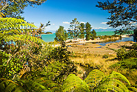 Appletree Bay on Abel Tasman Coastal Track - Abel Tasman National Park, Nelson Region, New Zealand