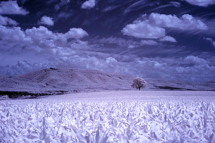 Madison County, Virginia photographed in infrared. Photo/Andrew Shurtleff
