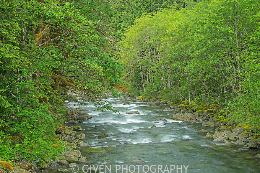 Middle Fork of the Snoqualmie River, Washington
