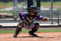 Colorado Rockies catcher Franklin Garcia (2) during an Extended Spring Training game against the Chicago Cubs at Sloan Park on April 17, 2018 in Mesa, Arizona. (Zachary Lucy/Four Seam Images)