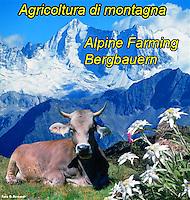 Agricoltura di montagna, Berglandwirtschaft