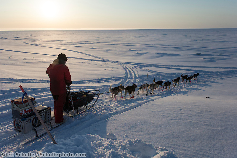 Lance Mackey crosses the road and heads down the bank onto the Bering Sea  as he leaves the Elim checkpoint on Tuesday March 12, 2013...Iditarod Sled Dog Race 2013..Photo by Jeff Schultz copyright 2013 DO NOT REPRODUCE WITHOUT PERMISSION