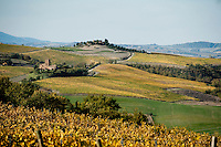View over the undulating hills from Palazzone vineyards near Orvieto, Umbria, Italy Giovanni Dubini, wine producer at Palazzone vineyards, near Orvieto, Umbria, Italy