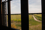 Venice | Island of Sant'Erasmo | Orto di Venezia | panoramic view of the vineyard from Thoulouze's house