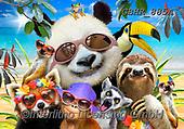 Howard, SELFIES, paintings+++++,GBHR885A,#Selfies#, EVERYDAY ,panda,pandas
