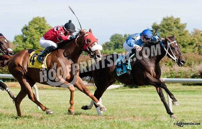 Sky Above winning at Delaware Park on 9/26/13