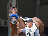 6th Dwyer Stakes - Code of Honor