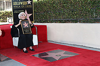 LOS ANGELES - OCT 28:  Lina Wertmuller at the Lina Wertmuller Star Ceremony on the Hollywood Walk of Fame on October 28, 2019 in Los Angeles, CA