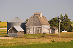 Sheds and metal corn crib surround a barn with cupola with fading white paint at a corn farm in Iowa.