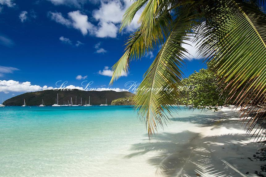 Big Maho Bay Beach.Maho Bay, St John.Virgin Islands National Park