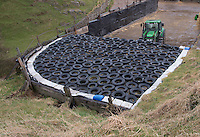 Silage clamp covered in car tyres with John Deere tractor, Bootle, Cumbria.