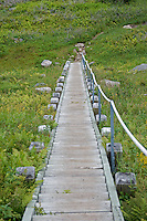 Steep Stairs on Gros Morne Mountain Trail