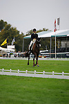 Allison Springer [USA] riding Arthur during the Dressage phase of the 2014 Land Rover Burghley Horse Trials held at Burghley House, Stamford, Lincolnshire