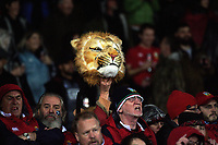 Lions fans during the 2017 DHL Lions Series rugby union match between the NZ Maori and British & Irish Lions at Rotorua International Stadium in Rotorua, New Zealand on Saturday, 17 June 2017. Photo: Dave Lintott / lintottphoto.co.nz