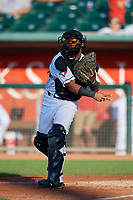 Lansing Lugnuts Gabriel Moreno (23) during a Midwest League game against the Burlington Bees on July 18, 2019 at Cooley Law School Stadium in Lansing, Michigan.  Lansing defeated Burlington 5-4.  (Mike Janes/Four Seam Images)
