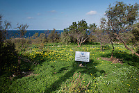 Malta, 28 December 2014<br /> <br /> Small park at the North coast at St Paul's Bay, close to an old defence wall and financed by the local council.<br /> <br /> Photo Kees Metselaar