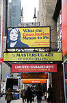 "Theatre Marquee unveiling for Heidi Schreck's ""What the Constitution Means to Me"" at the Hayes Theatre on February 20, 2019 in New York City."