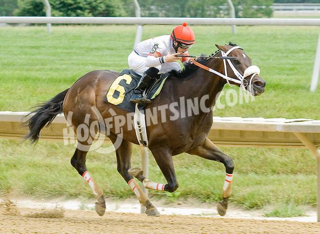 Tripplite winning at Delaware Park on 6/25/12