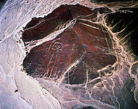 The Astronaut   The  Nasca Lines, Peru   Nasca Lines National Archeological Park     Ancient geoglyphs (200-600 AD)     Nasa Culture  Figure is seen from the air and is several hundred feet in height