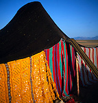 Colourful detail of fabric of nomad tent Sahara desert, near Zagora, Morocco