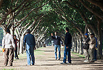 Men play bocce under rows of trees at the Ligue Arab Park in Casablanca.<br /> <br /> Ben Sklar for the New York Times