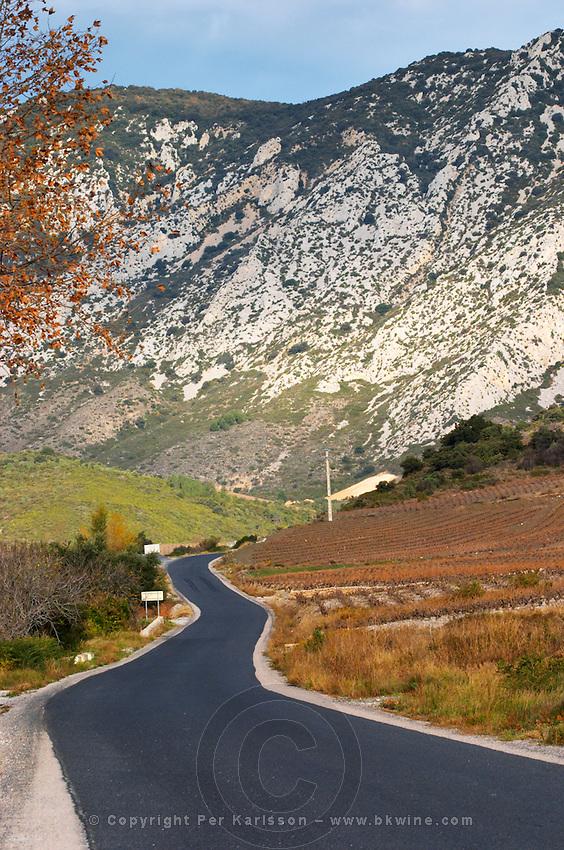Maury. Roussillon. France. Europe.