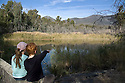 Children watching platypus on surface of Black Flats Pond, Tidbinbilla Nature Reserve, Australian Capital Territory