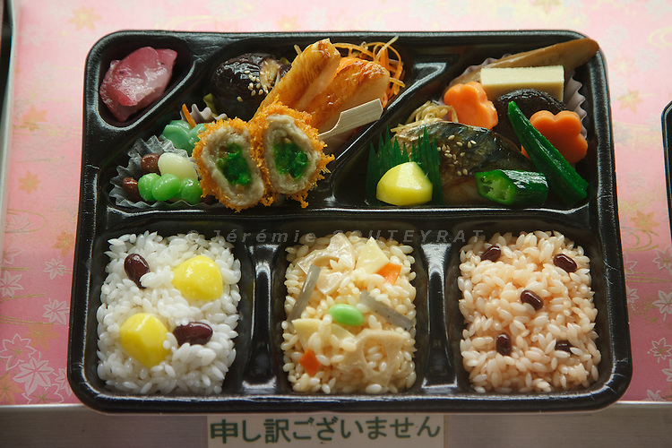 Tokyo, October 17 2011 - Ekiben (lunch box sold at japanese train stations) at Tokyo station.