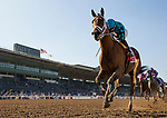 ARCADIA, CA - FEBRUARY 03: Roy H #1, ridden by Kent Desormeaux wins the Palos Verdes Stakes at Santa Anita Park on February 3, 2018 in Arcadia, California. (Photo by Alex Evers/Eclipse Sportswire/Getty Images)