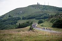 peloton in the descent of the Grand Ballon<br /> <br /> Stage 6: Mulhouse to La Planche des Belles Filles (157km)<br /> 106th Tour de France 2019 (2.UWT)<br /> <br /> ©kramon
