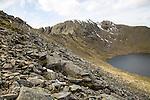 Striding Edge arete Helvellyn mountain peak and Red Tarn corrie lake, Lake District, Cumbria, England, UK