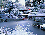 Seattle, WA                     <br /> A winter sun illuminates snow covered trees and foot bridges in Kubota Garden