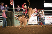 SEBRA - Gordonsville, VA - 6.14.2014 - Bulls & Action