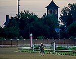 August 30, 2020: Rushie exercises as horses prepare for the 2020 Kentucky Derby and Kentucky Oaks at Churchill Downs in Louisville, Kentucky. The race is being run without fans due to the coronavirus pandemic that has gripped the world and nation for much of the year. Scott Serio/Eclipse Sportswire/CSM
