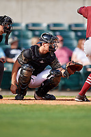 Arkansas Travelers catcher Marcus Littlewood waits to receive a pitch in front of home plate umpire Kyle Wallace during a game against the Frisco RoughRiders on May 28, 2017 at Dickey-Stephens Park in Little Rock, Arkansas.  Arkansas defeated Frisco 17-3.  (Mike Janes/Four Seam Images)