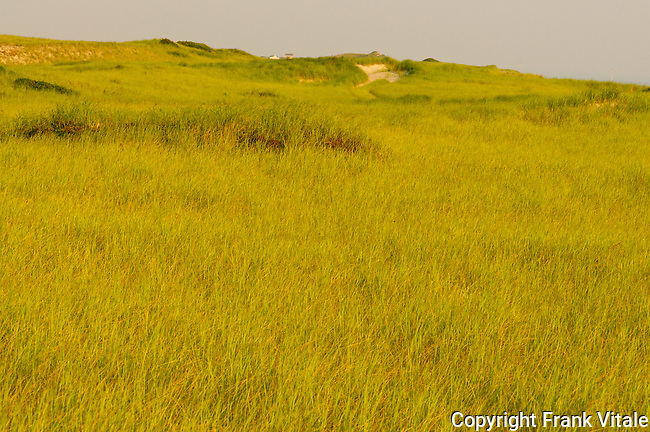 Early morning view of distant dune shacks in the Province Lands Dunes of Cape Cod