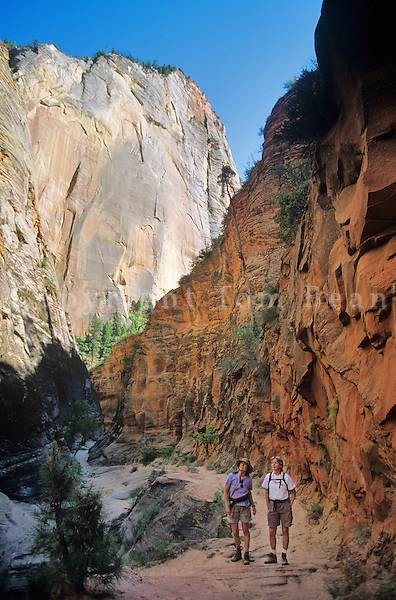 Hikers in Echo Canyon along the East Rim Trail, Zion National Park, Utah,.AGPix_0177.
