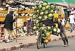 Pictured: Transporting cabbages to market on a bike.<br /> <br /> Goods as varied as mattresses and cabbages are precariously balanced on bikes and hauled enormous distances to be sold at market stalls.  A series of photos show workers in the Democratic Republic of Congo and neighbouring Rwanda walking up to 20 miles as they transport their wares from small villages and farms to city marketplaces.<br /> <br /> One shot even shows a man riding a motorbike with seven multi-coloured mattresses tied to the back.  Bicycles laden with sacks bursting full of potatoes will weight more than 30 stones, as workers wheel them from their homes to be sold.  SEE OUR COPY FOR DETAILS.<br /> <br /> <br /> Please byline: Joe Dordo Brnobic/Solent News<br /> <br /> © Joe Dordo Brnobic/Solent News & Photo Agency<br /> UK +44 (0) 2380 458800