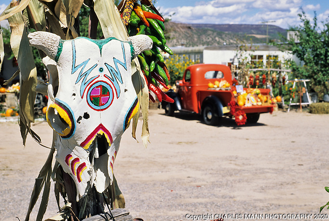 A painted skull and a red pickup truck make a colorful fall scene at a fruit stand  near the  village of Velarde in  northern New Mexico.i