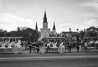 We like the look of this image of Jackson Square in New Orleans as the horse draw carriages line up to catch a fare in black and white gave which gave a sense of time to the image.  This area is the oldest in the city and this black and white reflect this historic landmark of New Orleans.  The french quarter in New Orleans is a very active place no matter what day of the week it is.  We enjoyed people watching at the square as there were all kinds of people, music, art and food so it was a win win for us.