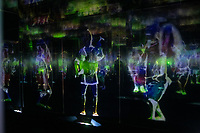 Team Lab's Borderless digital museum in Tokyo, Japan, July, 2019. The digital museum is one of Tokyo's most popular attractions and uses innovative digital audio-visual displays.
