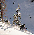Alta, Utah.  Powder skiing, blue sky.