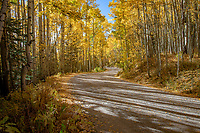 Alta Lakes Road in Fall in Colorado.  Alta Lakes is a popular dispersed camping area that offers fishing and camping in a spectacular alpine setting. There are approximately 16 primitive camping spots that are completely undeveloped.